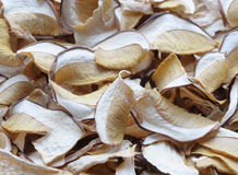 Dried mushrooms background Royalty Free Stock Photos