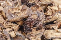 Dried mushrooms background Stock Photos
