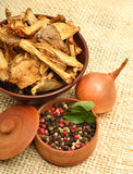 Dried mushrooms in the bawl, ceps, pepper in corns and raw onion Royalty Free Stock Images