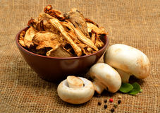 Dried mushrooms in the bawl, ceps and raw champignons on the sac Royalty Free Stock Photo