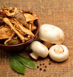 Dried mushrooms in the bawl, ceps and raw champignons on the sac Royalty Free Stock Images