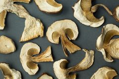 Dried mushrooms are  on a black background royalty free stock images