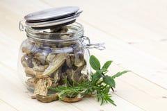 Dried mushrooms - boletus Royalty Free Stock Photos