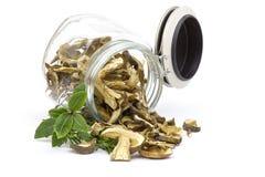 Dried mushrooms - boletus Royalty Free Stock Photography