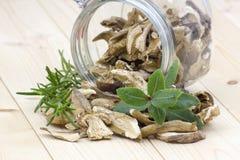 Dried mushrooms - boletus Stock Images