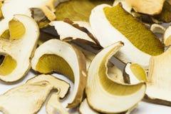 Dried mushrooms Boletus reticulatus, detail. Stock Photo
