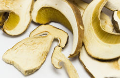 Dried mushrooms Boletus reticulatus,detail. Stock Photo