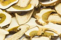 Dried mushrooms Boletus reticulatus, detail. Royalty Free Stock Photography