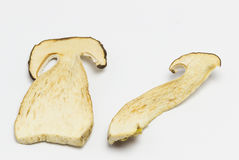 Dried mushrooms Boletus reticulatus,slices. Royalty Free Stock Photography