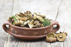 Dried mushrooms in a bowl Royalty Free Stock Photos