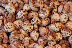 Dried Mushrooms, Chinese Market Royalty Free Stock Photography