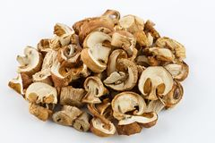 Dried mushrooms for cooking. On white background. Stock Photos