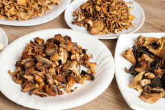Dried mushrooms of different varieties Stock Image