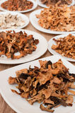 Dried mushrooms of different varieties Royalty Free Stock Images