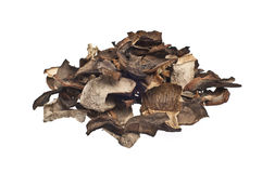Dried mushrooms Stock Photography