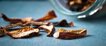 Dried mushrooms in glass jar Royalty Free Stock Photography
