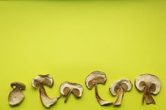 Dried mushrooms are  on a green background, alternative medicine royalty free stock images