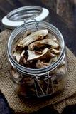 Dried mushrooms Royalty Free Stock Photo