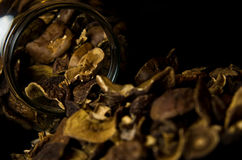 Dried Mushrooms in Jar Royalty Free Stock Photos