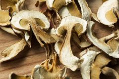 Dried mushrooms, non-traditional medicine and narcotic drugs royalty free stock photo