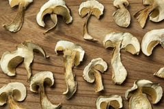 Dried mushrooms, non-traditional medicine and narcotic drugs. Background royalty free stock photos