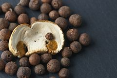 Dried mushrooms with spices for cooking. Photographed close-up Stock Image