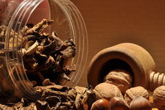 Dried mushrooms spilling from the container. Stock Image