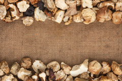 Dried mushrooms  were lying on sackcloth Stock Photo