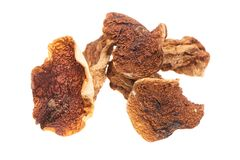 Dried mushrooms on white background Stock Images