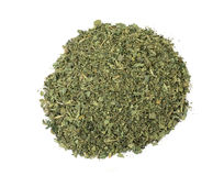 Dried nettle Royalty Free Stock Photography