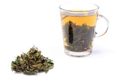 Dried nettle and cup of beverage on white background Royalty Free Stock Images