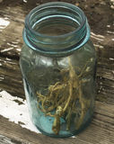 Dried Nettle Roots in Blue Vintage Jar Royalty Free Stock Photography