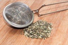 DRIED NETTLE TEA METAL TEA STRAINER Stock Photography