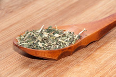 DRIED NETTLE TEA IN WOODEN SPOON Royalty Free Stock Photos