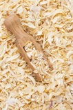 Dried onion Stock Images