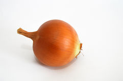 Dried onion pictures suitable for food sites and onion advertisements.  Royalty Free Stock Photo
