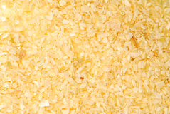 Dried Onions Stock Image