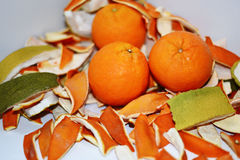 Dried orange and citrus peel. Isolated on white background Royalty Free Stock Images