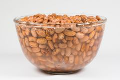Dried orange coloured beans absorb water. As they soak overnight to rehydrate stock photo
