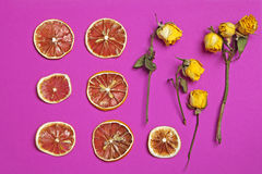 Dried orange and lemon slice with yellow rose on a burgundy background as an art work that can be used for decoration. The Dried orange and lemon slice with stock photo