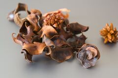 Dried orange peel potpourri. Stock Images