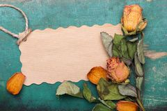 Dried orange roses and paper card on wooden background,. Copy space vector illustration
