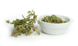 Dried oregano in a bowl and oragano twigs Stock Images