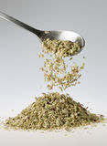 Dried Oregano Falling from Tablespoon Royalty Free Stock Photography