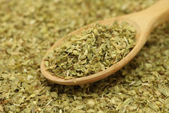 Dried oregano leaves in a wooden spoon Stock Images