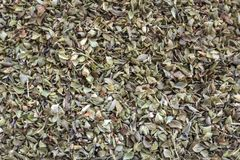 Dried oregano texture background pattern.  royalty free stock photography