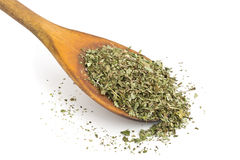 Dried oregano on wooden spoon Stock Image