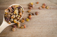 Dried Organic Raisins in a wooden Spoon. Stock Photos