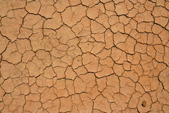 Dried out and cracked soil in the desert Royalty Free Stock Photos
