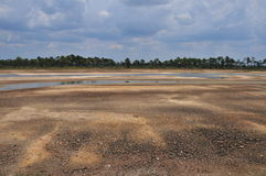 Dried out lakebed. Webb Lake on the Babcock Webb WMA shows the extent of the severe drought conditions in Charlotte County and elsewhere in Southwest Florida Stock Photo